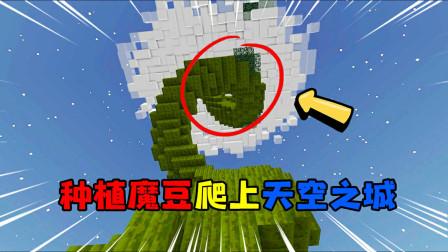 我的世界暮色森林45:成功种植魔豆爬上天空之城!如果飞龙还在就好了