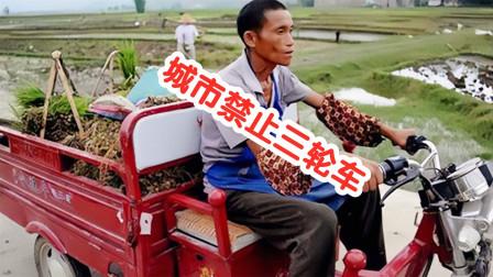 另类说三农:专家说禁止三轮车进城,农民怒了!  #歪歌社团#