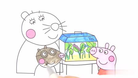 最新第八季 小猪佩奇观察宠物医生带来的毛毛虫 简笔画