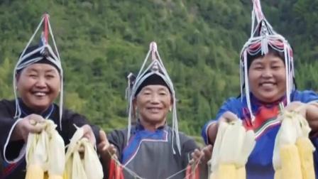 我们在行动 第五季 中国唯一的畲族自治县:景宁畲族自治县