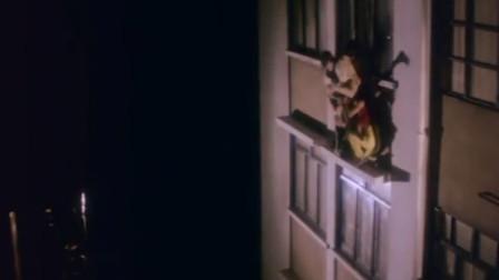 嫌疑们猫在窗外,没想到被包围,还不?