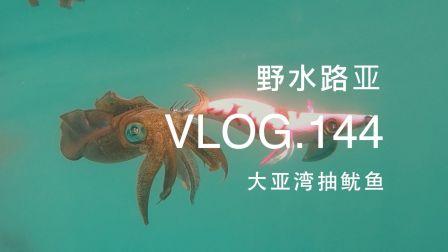 野水路亚VLOG.144 听说这里满海都是鱿鱼 连海水都没有 出海大亚湾