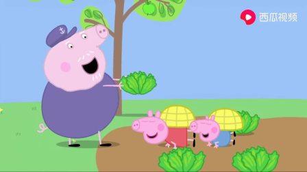 小猪佩奇:猪爷带大家参观蜂箱,还都扮成小蜜蜂,吃蜂蜜面包呢!(2)