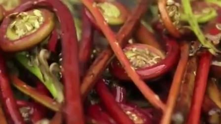《舌尖上的中国》山区里的贵族菜:龙须菜