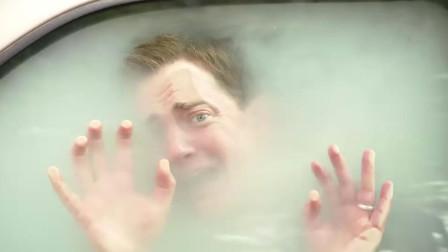 臭鼬将男子锁在车里,进行生化攻击!男子脸被熏得像白纸!喜剧片