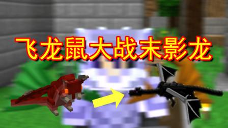 我的世界王国复兴19:飞龙鼠大战末影龙!从未见过的打法
