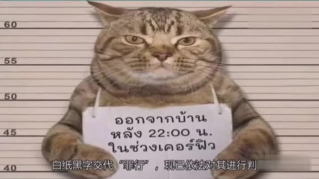 世界上被判刑的动物你知道哪些?