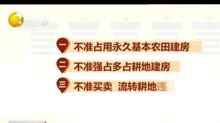 """第一时间 辽宁卫视 2020 两部联合发布""""八不准""""  坚决遏制新增乱占耕地建房问题"""