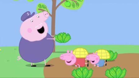小猪佩奇:猪爷带大家参观蜂箱,还都扮成小蜜蜂,吃蜂蜜面包呢!