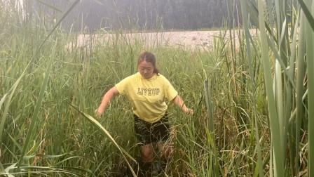 农村媳妇去河道下地笼,突然旁边芦苇荡传来小孩哭声,究竟咋回事