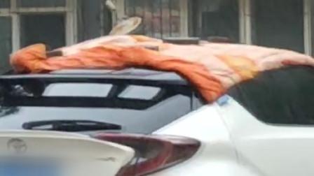 邯郸突降大雨 女子怕下冰雹用被子盖车顶压6块砖头