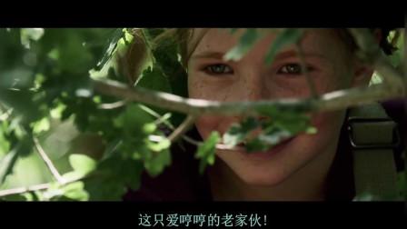 外国一个小女孩狐狸,却不小心遇到了熊,差点成了熊的午餐