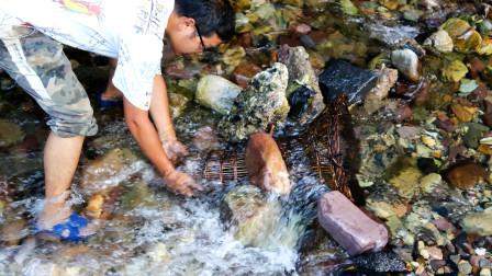 闲置40年的竹编陷阱,截断小溪试下捕鱼效果,不料2天后真有惊喜
