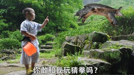 龟丞相和三岁小孩打赌,结果连输一百多个乌龟蛋,输糊涂了