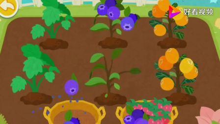 奇奇做的果酱有蓝莓酱和草莓酱你更喜欢哪个?宝宝巴士游戏