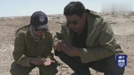 """侣行在楼兰遗址""""捡破烂"""":找到唐代铜钱,还拿骆驼粪在手里玩!"""