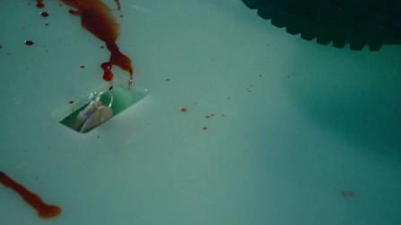 这部恐怖电影警示你,游泳时千万不要带戒指,否则后果不堪设想