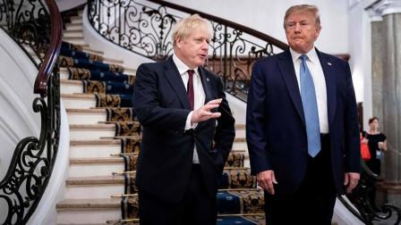 表面如亲兄弟!特朗普支持率猛跌之后,约翰逊竟盼望拜登入主白宫