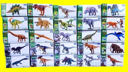 恐龙世界玩具大全,霸王龙剑龙棘龙食肉牛龙大比拼,谁最厉害呢?