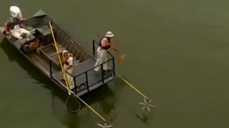 这样抓鱼也太爽了吧!平静的水面不知为何突然暴动,鱼儿争着跳出水面!