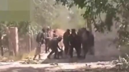 实拍叙利亚战场画面,过去看看那群人在干啥!