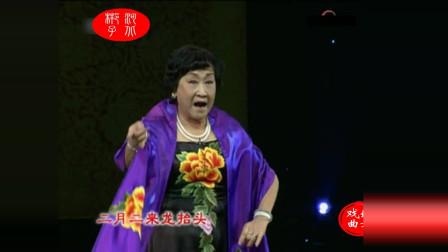 河北梆子《大登殿》选段 表演 张惠云