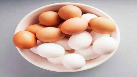 """原来红壳鸡蛋和白壳鸡蛋差别这么""""大""""!再也不瞎买,看完涨知识"""