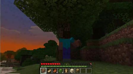 我的世界纯生存第七天打到第一块木头天黑了.怪兽来了