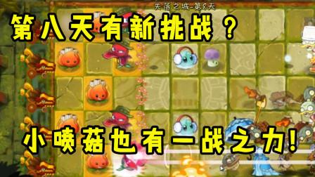 植物大战僵尸:第八天有新挑战?小喷菇也有一战之力!