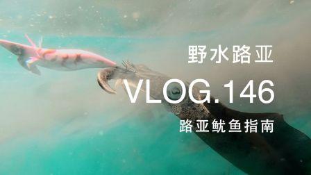 野水路亚VLOG.146 聊聊怎么路亚鱿鱼 堪比大片的超美实拍画面