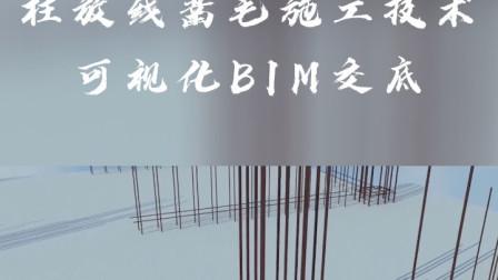 柱放线凿毛施工技术可视化BIM交底