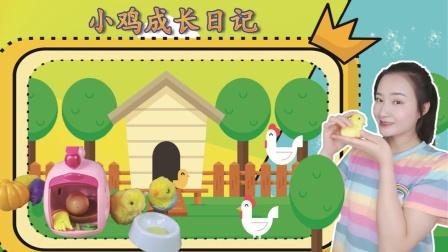 小鸡成长日记:体验养萌宠的乐趣,一起照顾小鸡长大吧