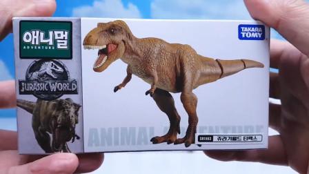 恐龙玩具世界乐园,超炫酷霸王龙、迅猛龙、猛犸象玩具开箱大揭秘