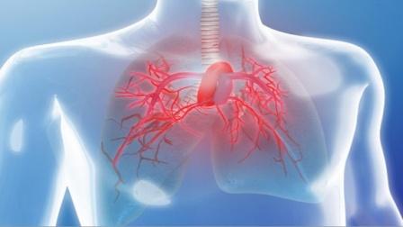 """感染新冠肺炎后,身体哪些""""器官""""会受损?权威专家正面回应!"""
