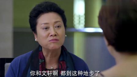 港媳嫁到:香港媳妇带婆婆喝丝袜奶茶,婆婆一听是丝袜,直接吐了