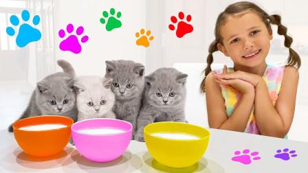 超可爱,萌娃小萝莉怎么喂小猫咪喝奶?可是它们怎么躲起来了?小正太能找到吗?