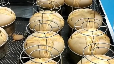 特别美味的鲜奶面包,一锅只能做8个,每次去买都排着很长的队!