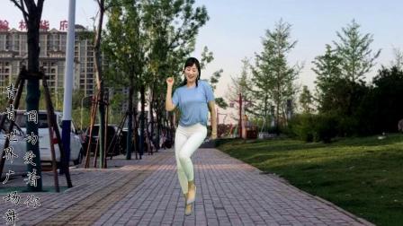 这个35岁阿姨爱上了广场舞你看马路边上都能起舞