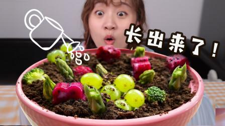 """终于破解了网红菜""""万物生长""""的秘密!真能好吃吗?"""