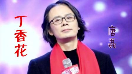 唐磊演唱一首催泪情歌《丁香花》,凄美故事,感人至深