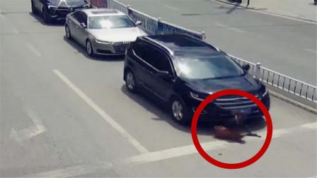 残疾人机动车道独行 左转弯横穿马路惨遭车碾压