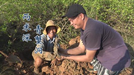 小池和老同学去挖螃蟹,遇到2米深的青蟹洞,抓出的过程太搞笑了