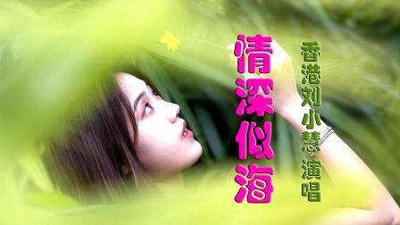 情深似海 - 刘小慧