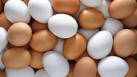 买鸡蛋时,选红皮还是白皮,多亏养殖场员工提醒,以后别再瞎吃了