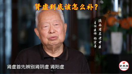 国家级名老中医杨宗善:肾虚怎么补?