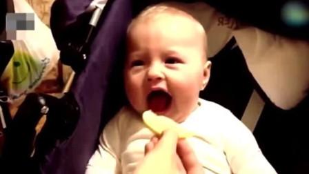 宝宝自告奋勇要吃柠檬,结果下一秒的反应,直接让爸妈笑疯了