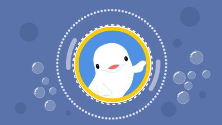 同学们,可爱的白鲸被称为海洋中的口技专家,这是为什么呢?