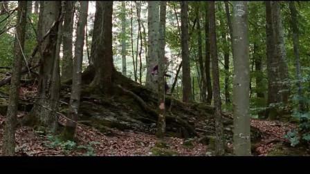 狐狸与我:小女孩进入山洞,这胆子也太肥了吧