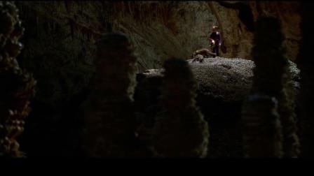 狐狸与我:小女孩进入山洞,下一秒直接后悔了