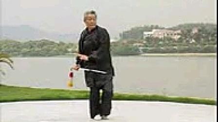 54式传统杨式太极剑(宋玉鹏老师示范)